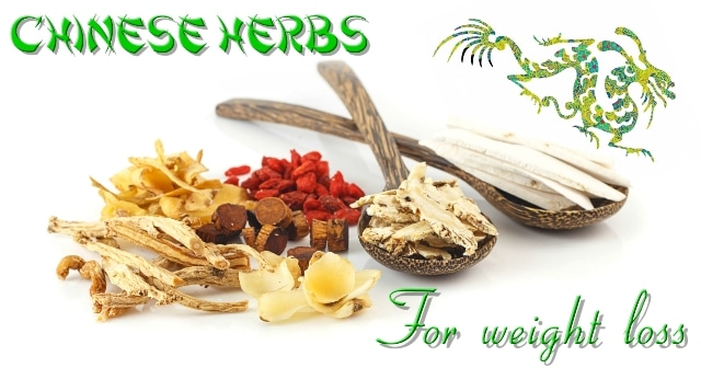 Chinese Herbs for Weight Loss - Organic Body Detox